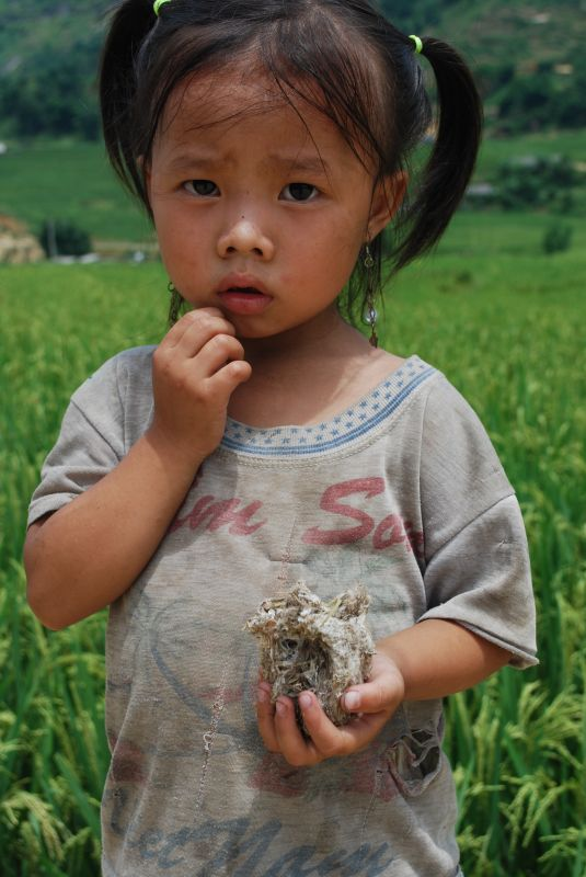 Girl with birds nest, Cat Cat Village